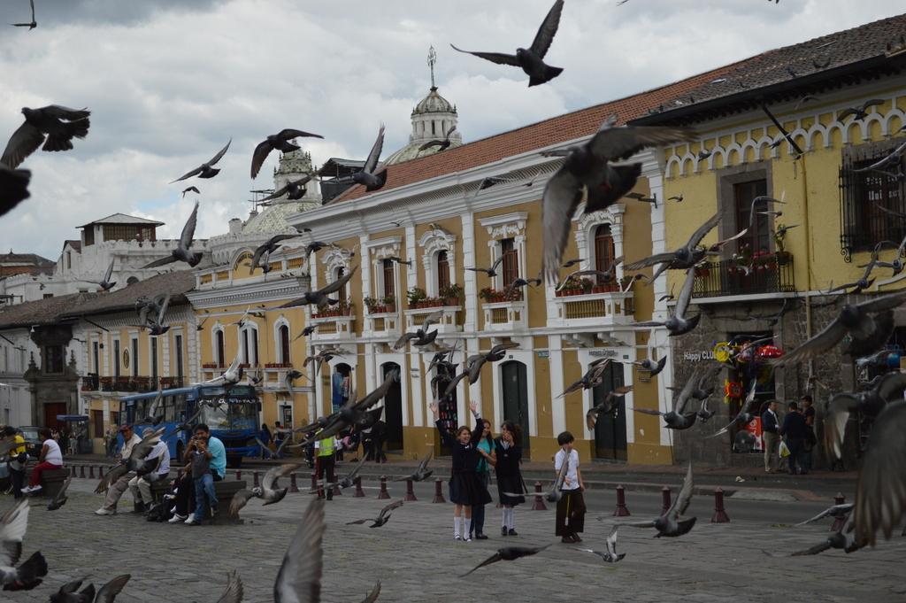Quito gezilecek yerler